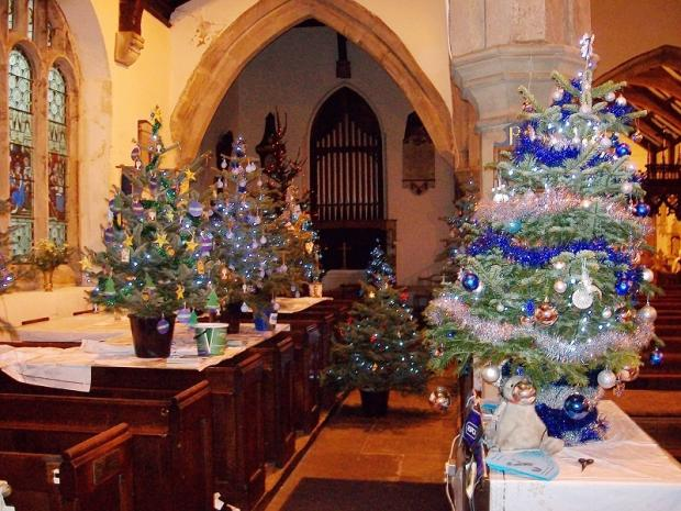 Some of the trees decorated by local charities at the first festival