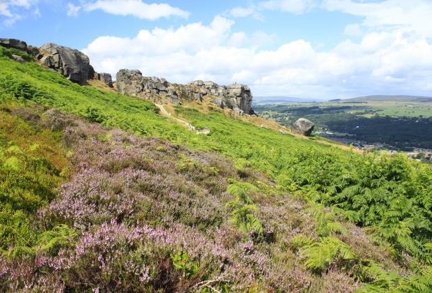 The Cow and Calf Rocks on Ilkley Moor, commanding spectacular views