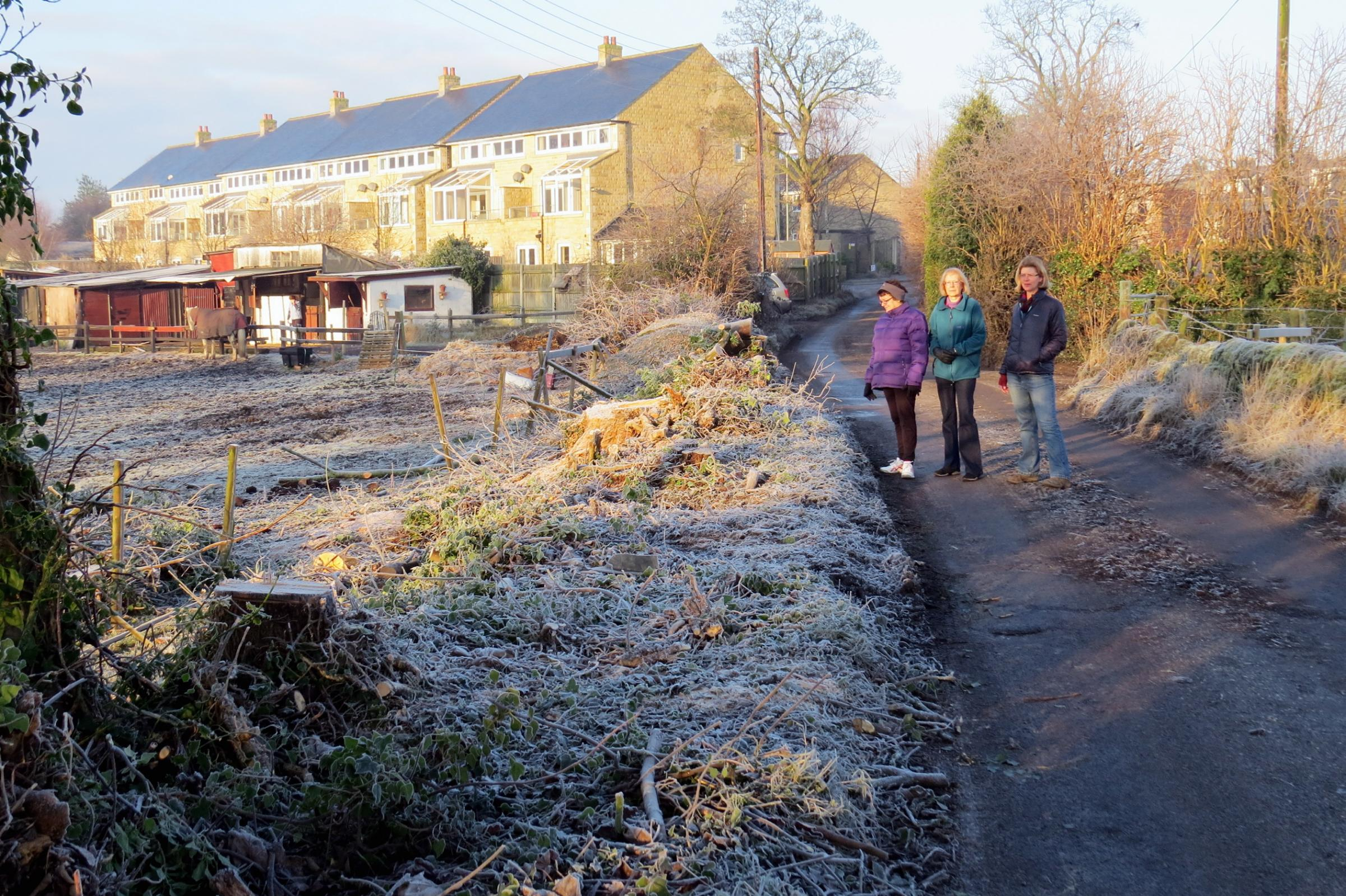 Surveying the site of the felled trees and hedgerow at East Busk Lane are, from left, residents Helen Thornton, Val Tate, and Alison Watson