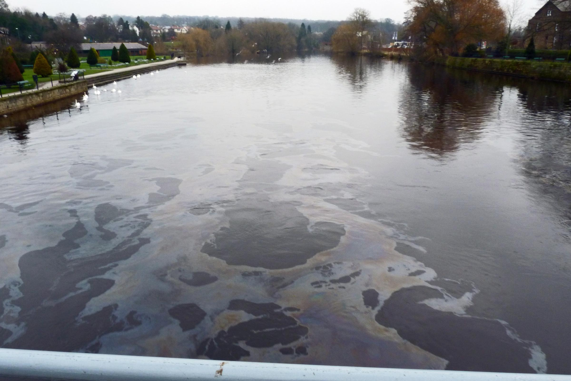 Oil in the river as seen from Wharfe Bridge in Otley. Picture by Robin Jakeways