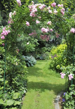 A Generic Photo of climbing roses over an archway in a pretty garden. See PA Feature GARDENING Gardening Column. Picture credit should read: PA Photo/Thinkstockphotos. WARNING: This picture must only be used to accompany PA Feature GARDENING Gardening Col