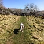 Ilkley Gazette: Plenty to see on this delightful walk in Langstrothdale
