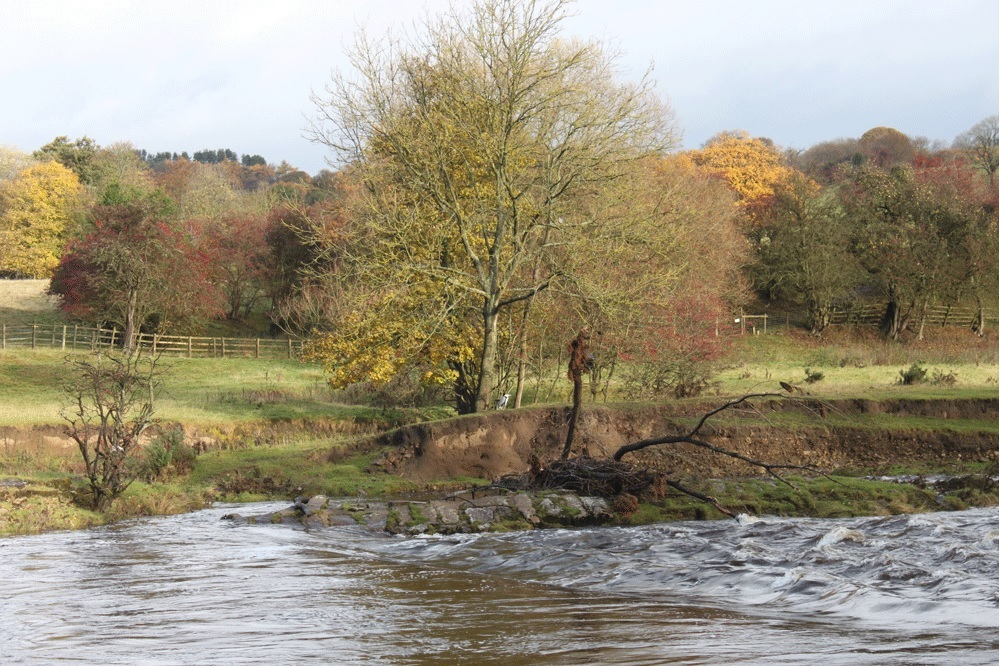 The stepping stones in the autumn at the site of proposed bridge over the River Wharfe in Burley-in-Wharfedale
