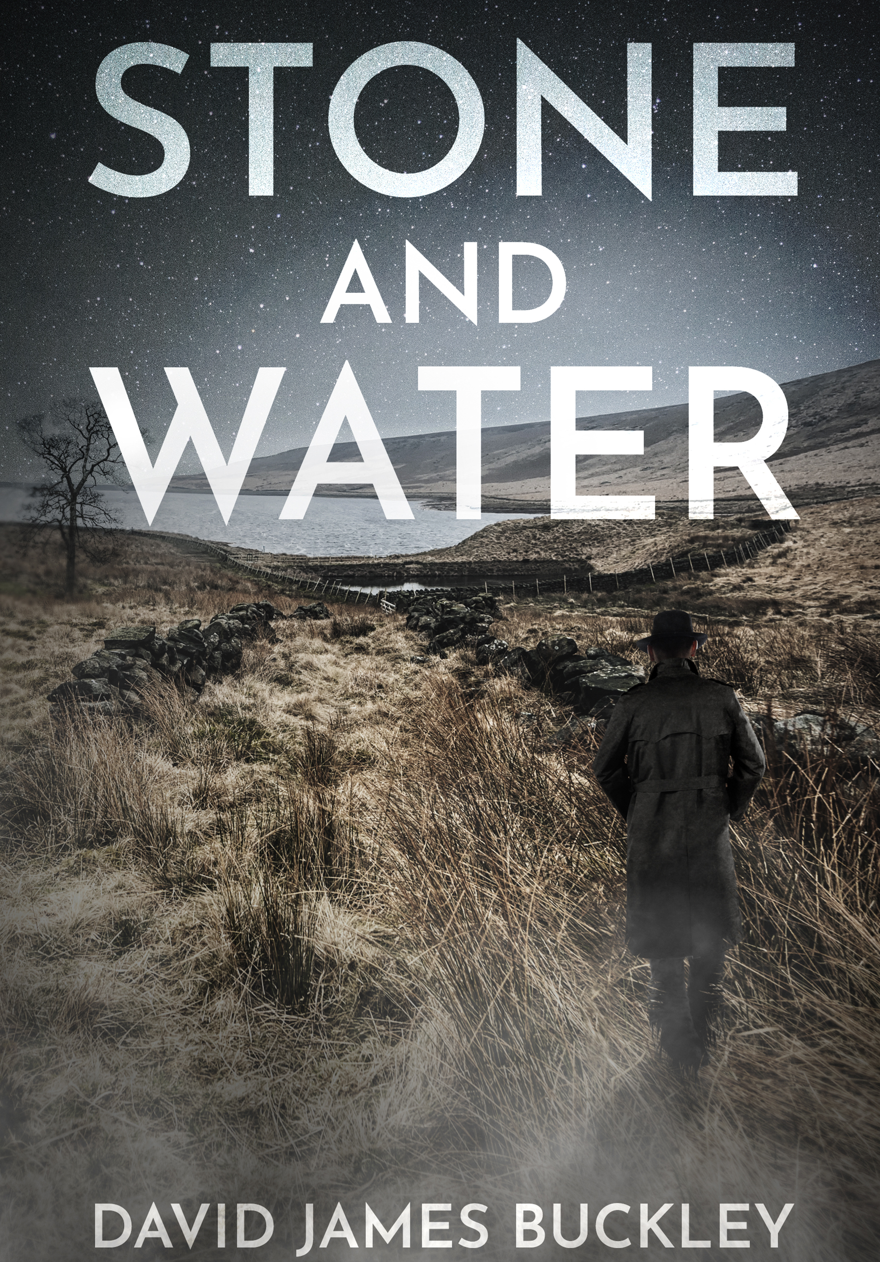 'Stone and Water' by David James Buckley