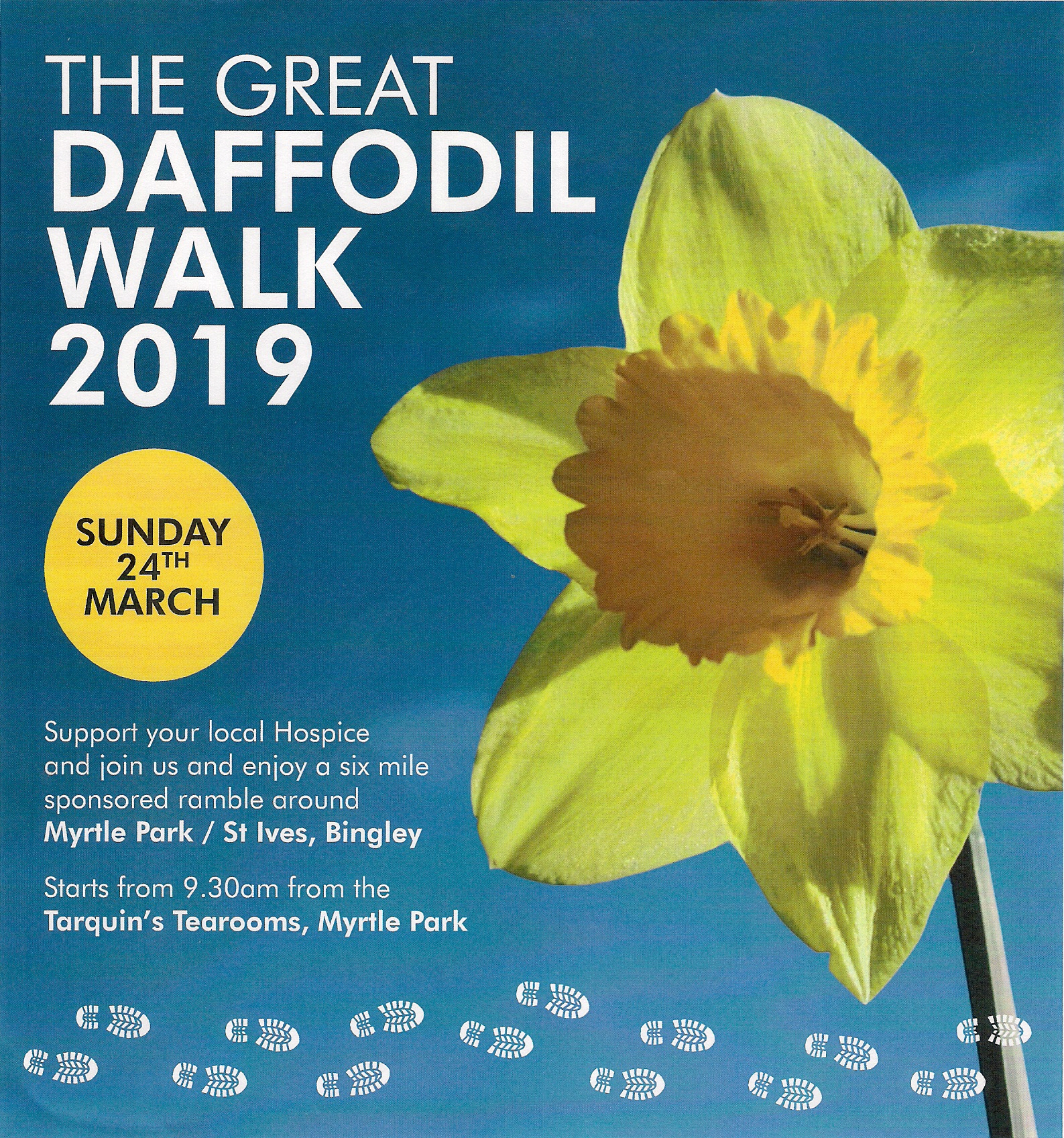 Great Daffodil Walk 2019