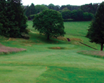 Ilkley Gazette: Ilkley Golf Club