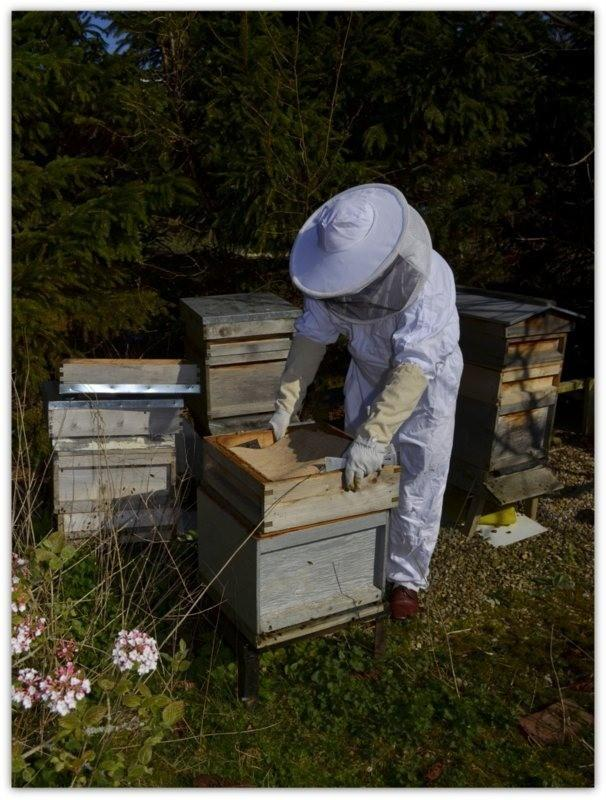 Rob Claxton-Ingham of Wharfedale Beekeepers Association. Photo by Simon Carey