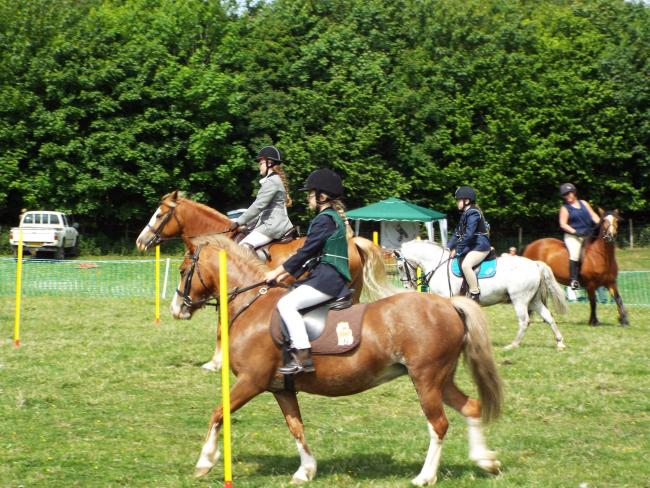 Equestrian fun at the 2018 Askwith Show