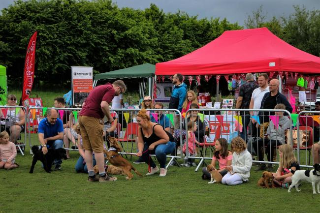 A scene from the Donkey Sanctuary Leeds' 2018 Fun Dog Show. Hazel Joy Stead Photography